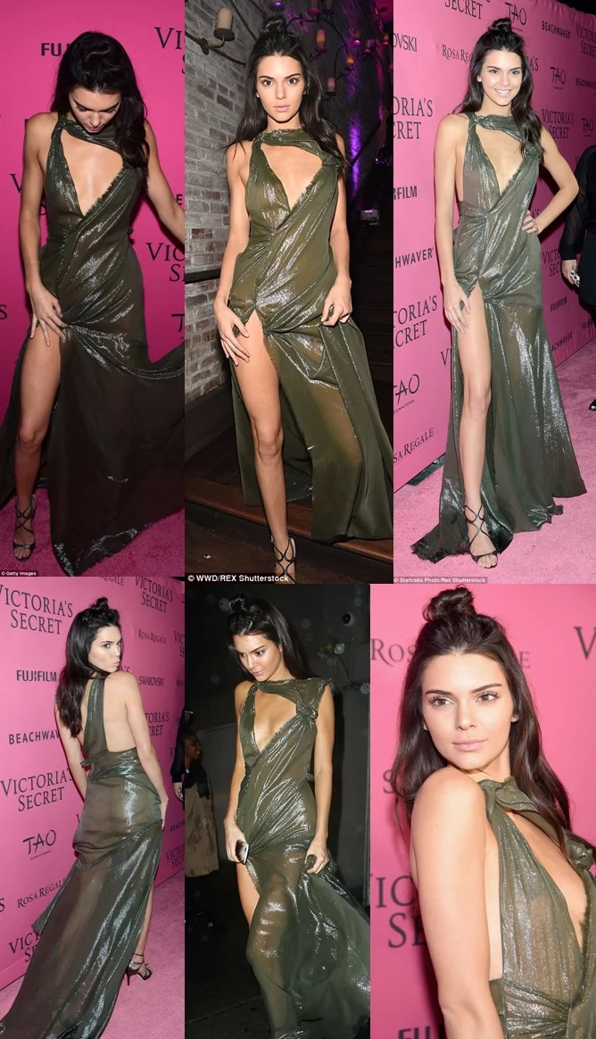 Kendall Jenner's New Dress Won't Help To Hide Her Boobs & Bum