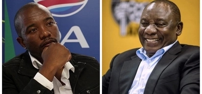Ramaphosa: ANC will rise in unison to defend Maimane after white privilege remark