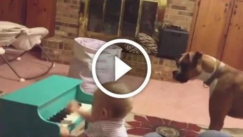 Este perro hace un dueto con el bebé y son adorables