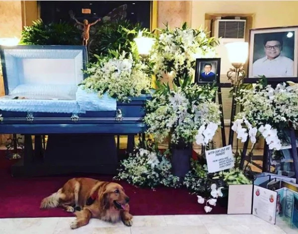 Dog of law freshman hazing victim stays beside his coffin