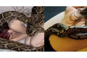 Woman sleeps with her pet snake every night... Then doctors warn her about possible consequences!