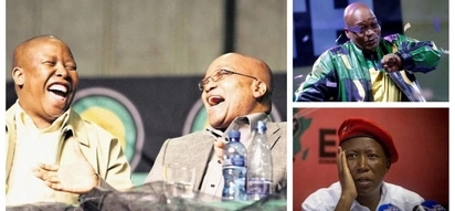 Report reveals how Malema destroyed justice system while defending Zuma in 2008
