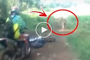 Netizens spotted this UNKNOWN two-legged creature in the deep forest. The way it was behaving itself stunned everyone!