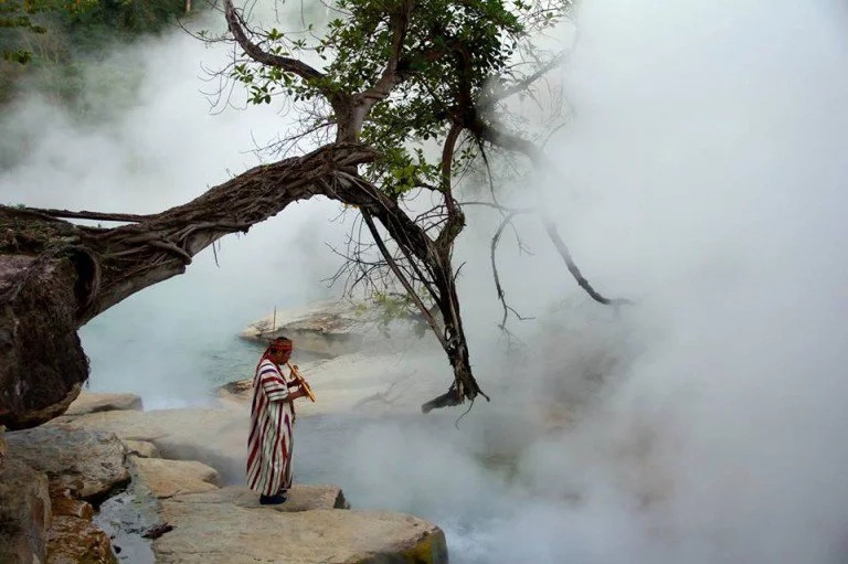 This river is so hot that boil pure animals alive