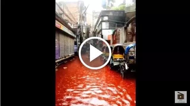 Ríos de sangre en las calles de esta ciudad por sacrificio de animales