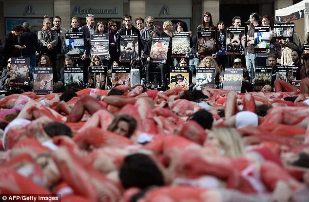 Animal Lover Stage Bloody Protest Against Meat Consumption
