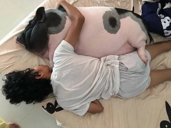 This boy had a pig for a pet and their photos are amazing