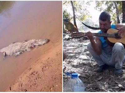 Grisly discovery! Human remains found inside huge 3.9-meter alligator after farmer went missing