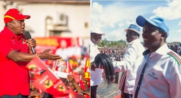 DP Ruto's close billionaire friend pleads with Uhuru to not let Raila's 'Canaanites' suffer