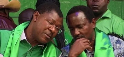List of MPs and governors to be punished by Kalonzo and Wetangula