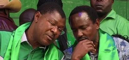 Wetang'ula and Kalonzo secretly meeting Jubilee agents - Miguna Miguna