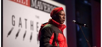 Malema: ANC's elective conference will serve as an unveiling of its own tombstone