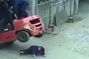Quiso evitar accidente y murió aplastada por montacargas