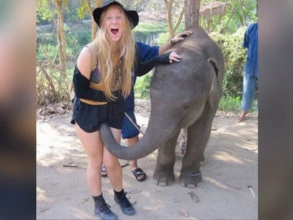 An elephant decided to show his affection for a woman. What he did will make you laugh to tears!