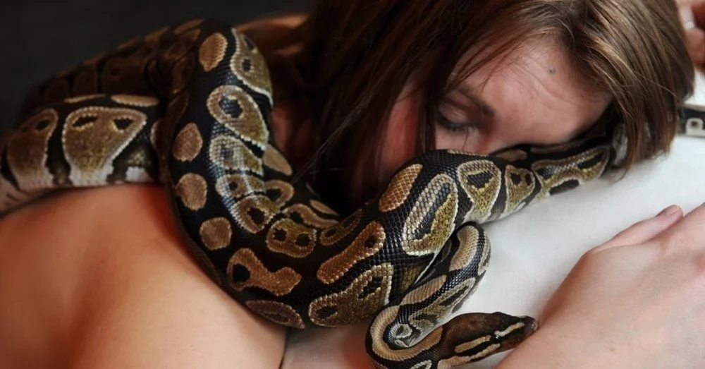 SHOCKING: This Woman Sleeps With Her Python Every Night But The Vet Told Her This!