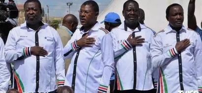 Viongozi wa NASA wamwahidi Rais Uhuru Kenyatta maisha ya starehe akistaafu