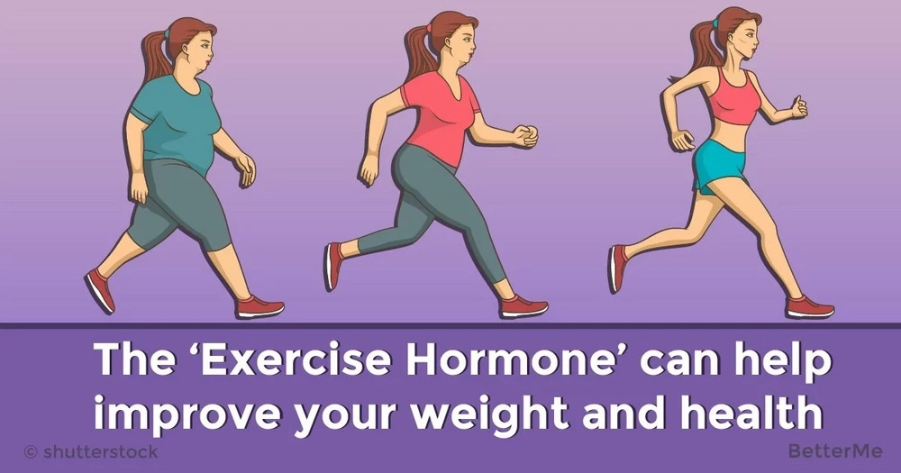 The 'Exercise Hormone' can help improve your weight and health
