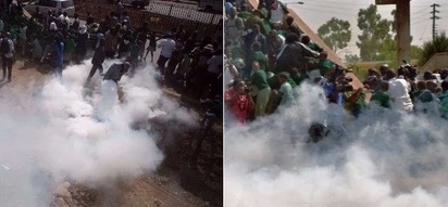 Kisumu teacher narrates how police hurled tear gas at school kids aged 3-7 during anti-IEBC protests (video)