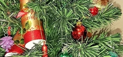 Woman wakes up to find a venomous snake wrapped around her Christmas tree (photo)