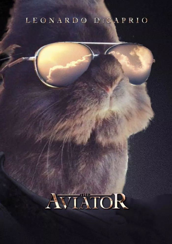 Somebody Put Sunglasses on a Cute Bunny and Internet Went Totally Insane (10+ Pics)