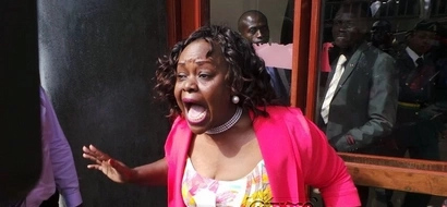 Why Millie Odhiambo cannot be arrested after calling Uhuru a thief and 'FISI'