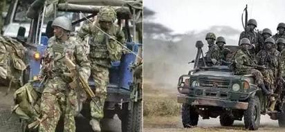 Politicians forced to flee after KDF soldiers STORM meeting