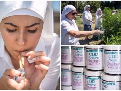 Meet women who have dedicated their lives to growing marijuana and make millions from it
