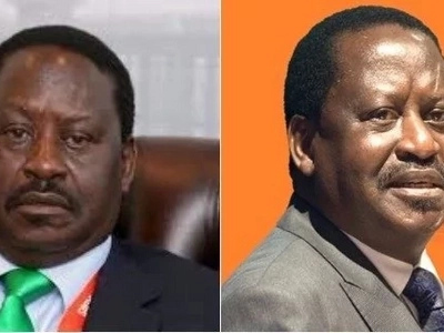 Mt Kenya leaders advise Raila to drop the Supreme Court battle and vie for a smaller seat in Kibra