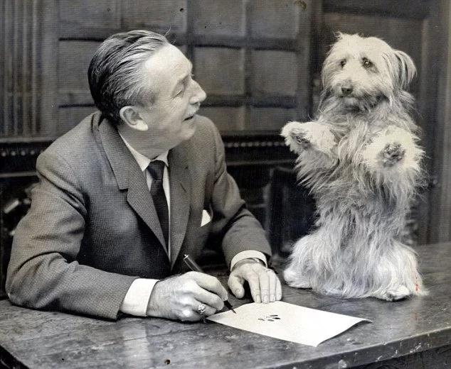 Un chien fidèle a attendu son propriétaire en vain chaque jour pendant plus d'un an en dehors d'un hôpital russe