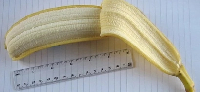 The average penis size revealed... and it's smaller than you think