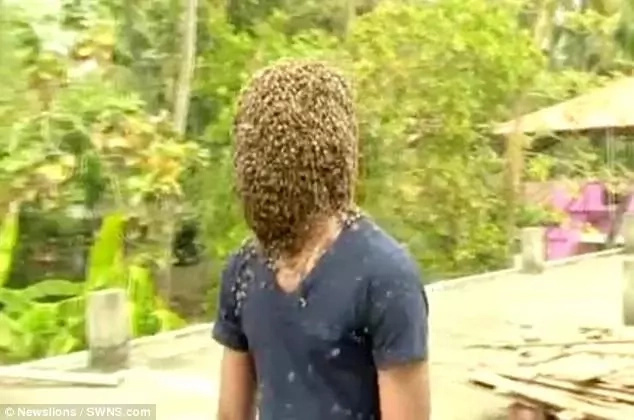 """He said he performs the stunts to spread awareness about the """"gentleness"""" of bees"""