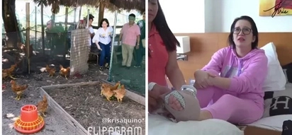 Kris Aquino gets hospitalized after suffering shocking accident while feeding chickens for new GMA show