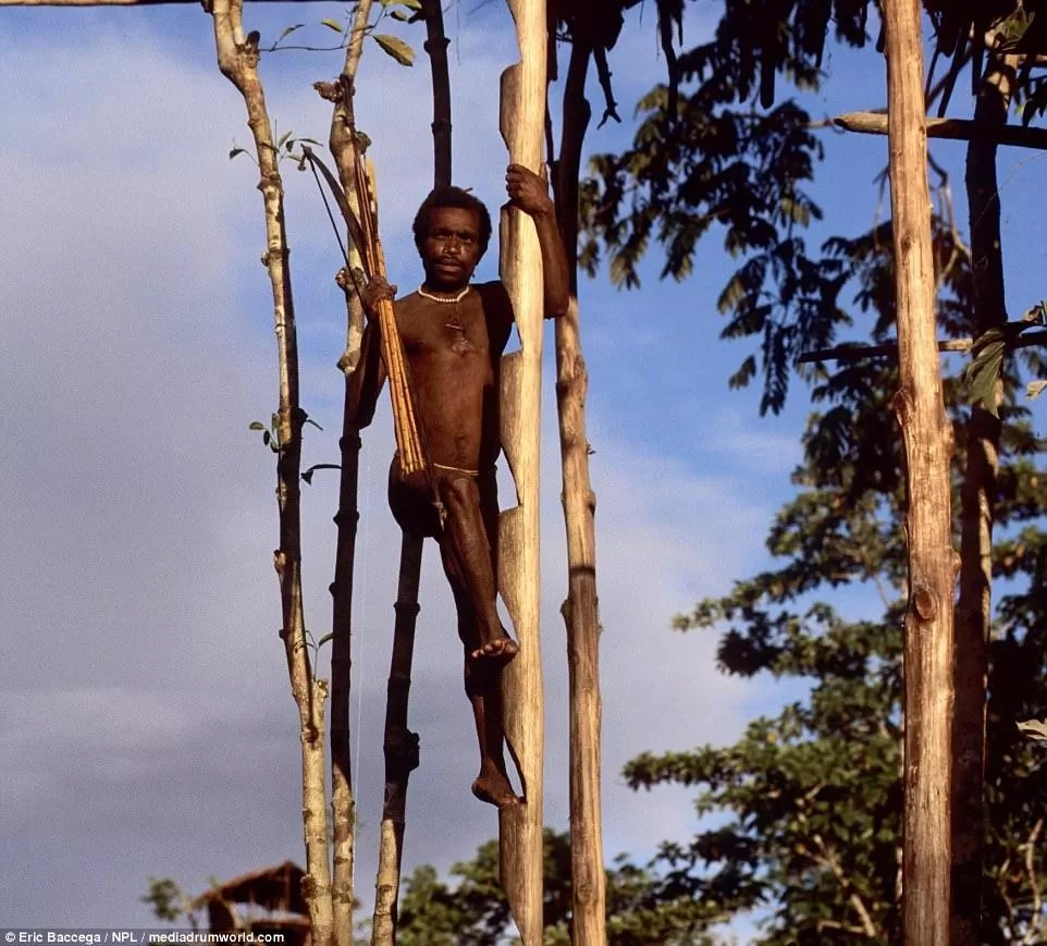 A tribesman climbing a tree house. Photo: Eric Baccega