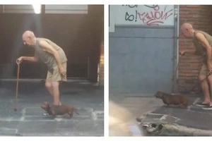 This dog patiently walks with its old owner. Despite being slow, the adorable pet still waits for his every step