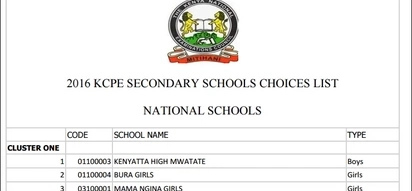 18 PRESTIGIOUS schools that all 2016 KCPE candidates wish to be admitted to