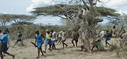 Bandits kill 5 and steal 300 cattle along Pokot- Marakwet border