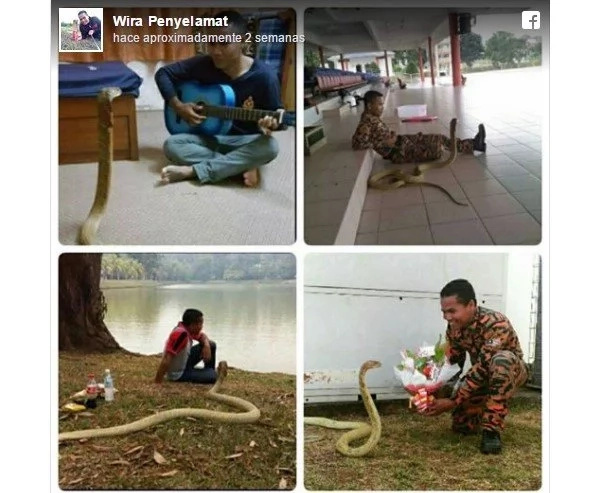 People Said This Snake Is His Reincarnated Girlfriend — BUT Then He Started To Talk...