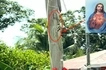 Milagro ba 'to? Image of Jesus Christ appears on an electric post in Laoag City