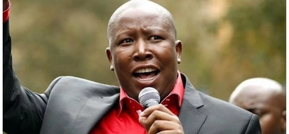 Dear Julius: an open letter to the EFF leader about the H&M protests by a white SA activist