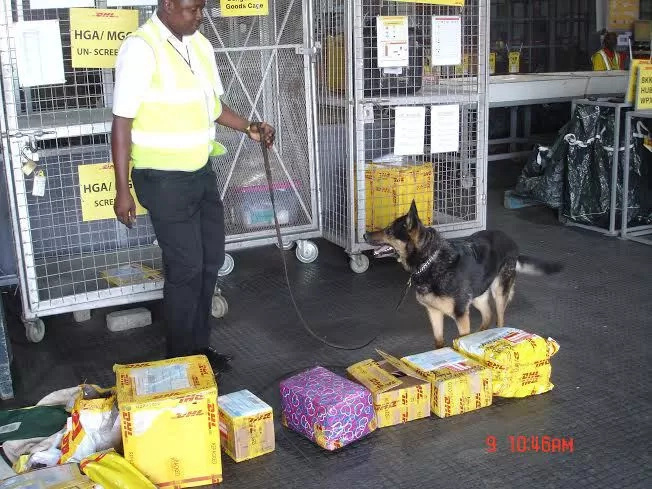 See photos of massage pens filled with heroine intercepted at JKIA