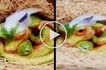 Is it real? Shocking video of a cute baby dragon goes viral! Watch the unbelievable clip here!