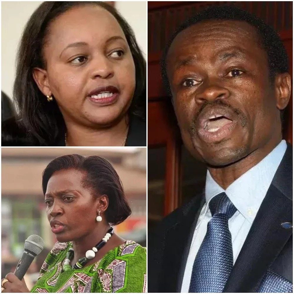 Haya ni maoni ya PLO Lumumba kuhusu Anne Waiguru