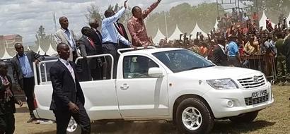 Jubilee MP tells Uhuruto to use the Nakuru rally to repent