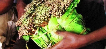 Meru Man Charged With Theft Of Miraa Worth KSh 500, Saved From Worse