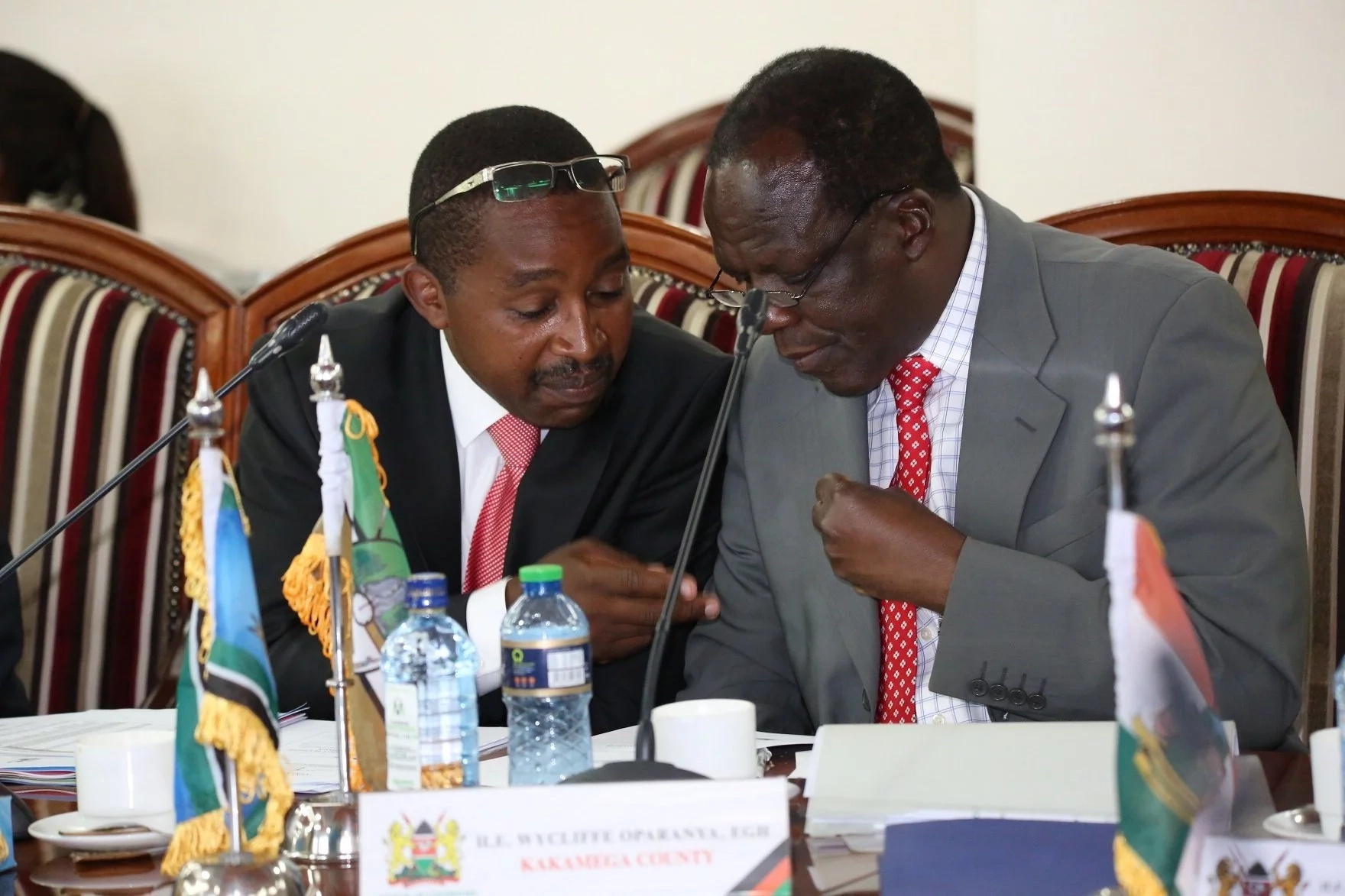 We will not stand by and watch as Kenya is torn apart by ethnicity and tribal politics - Governors
