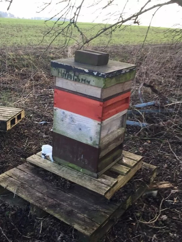 One of the hives that was stolen