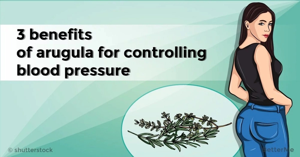3 benefits of arugula for controlling blood pressure