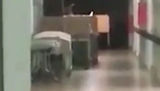 Spooky! SOUL of dead child caught on camera by terrified hospital staff. Can you see it (photos,video)