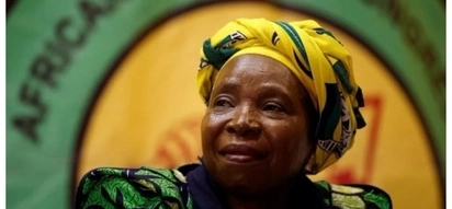 What would a President Nkosazana Dlamini-Zuma mean for South Africa?