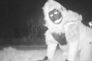 Kansas wildlife camera was supposed to catch a mountain lion, but caught some much stranger things instead